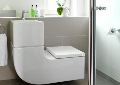 Single Two W+W wash basin/toilet combination